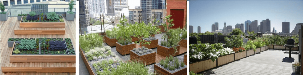 Planter Box in roof garden